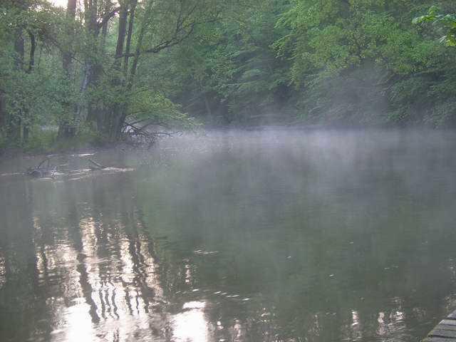 Mistyczna mgła...