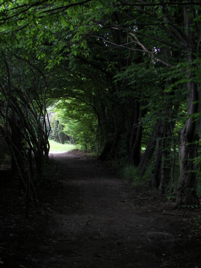 Na końcu ścieżki