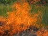 Żywioł ognia